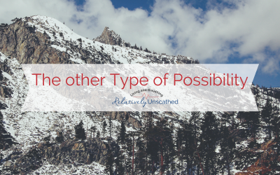 The Other Type of Possiblity