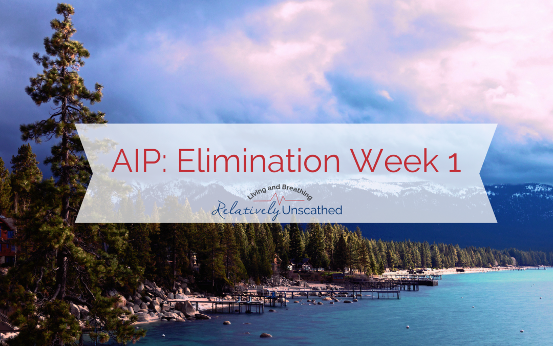 AIP Elimination Week 1