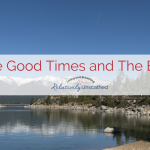 The Good Times and The Bad