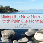 Mixing the New Normal with Plain Ole Normal