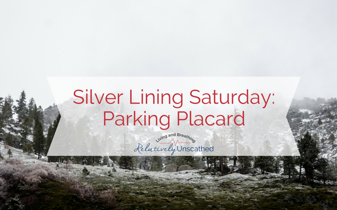 Silver Lining Saturday: Parking Placard