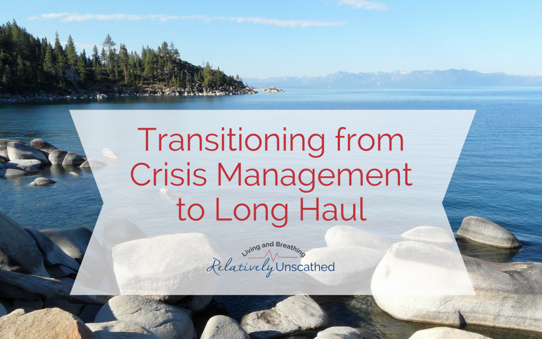 Transitioning from Crisis Management to the Long Haul