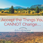 Accept the things you CANNOT change….