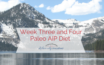 Weeks Three and Four – Paleo Autoimmune Protocol (AIP) Diet Update