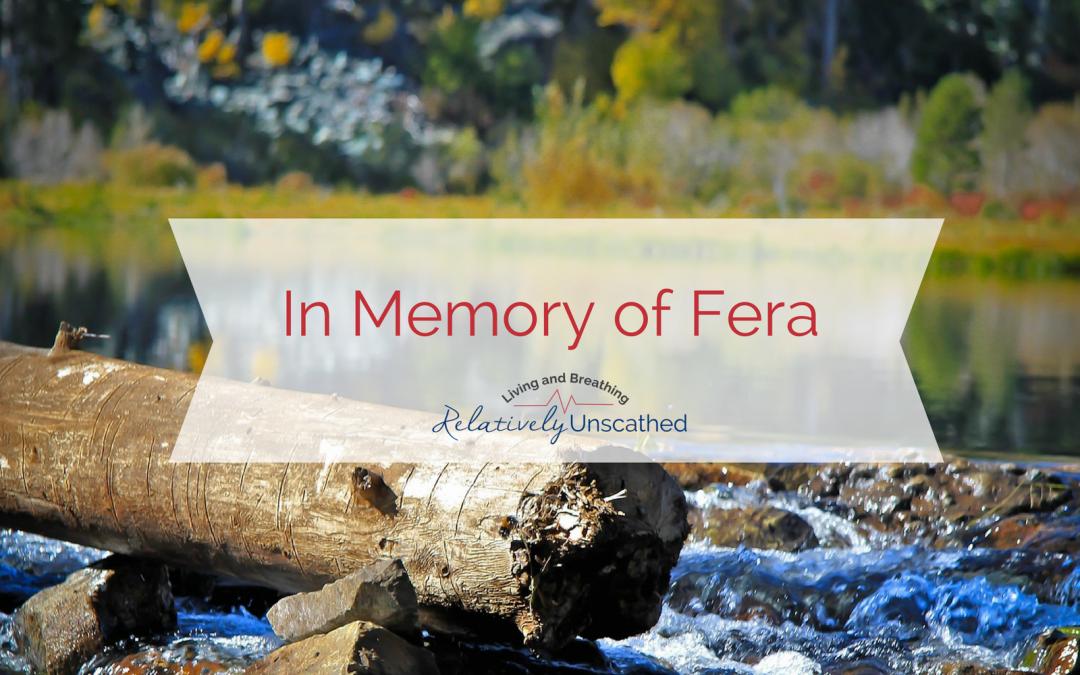 In Memory of Fera