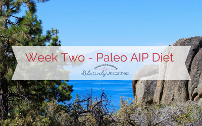 Week Two – Paleo Autoimmune Protocol (AIP) Diet Update