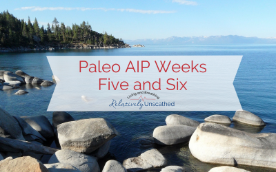 AIP Weeks Five and Six